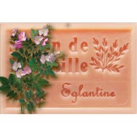 Eglantier - Savon de Marseille
